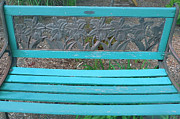 Bruce Tubman - The Blue Bench 1