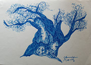 Olive  Drawings - The Blue Olive Tree by Esther Newman-Cohen