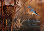 Nest Watching Posters - The Bluebird Poster by Lori Deiter