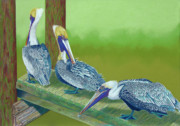 Sea Birds Pastels - The Blues Brothers by Tracy L Teeter
