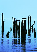 Silhouette Metal Prints - The Blues Metal Print by Lisa Comperry