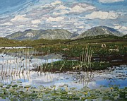Connemara Paintings - The Bog Road Roundstone Connemara by Diana Shephard