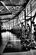 Weigh Framed Prints - The Bohler Athletic Complex Weight Room - WSU Framed Print by David Patterson