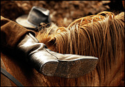 Horse Riding Digital Art - The Boot Rest  by Steven  Digman
