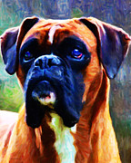 Cute Dogs Digital Art Prints - The Boxer - Painterly Print by Wingsdomain Art and Photography