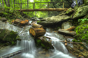 Gatlinburg Photo Posters - The Bridge at Alum Cave Poster by Debra and Dave Vanderlaan