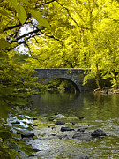 Wissahickon Photos - The Bridge at Valley Green by Bill Cannon