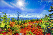 Dan Friend - The brilliant colors of Roaring Plains in Dolly Sods