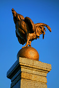 National Symbol Prints - The Bronze Rooster Print by Olivier Le Queinec