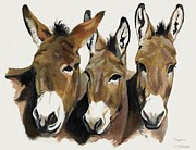 Donkeys Prints - The Brothers Three Print by Suzanne Schaefer