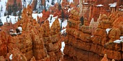 Naturelle Prints - The Bryce Canyon Series VIII Print by Scott Cameron