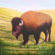 J W Kelly - The Buffalo