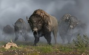 Bulls Digital Art Prints - The Buffalo Vanguard Print by Daniel Eskridge