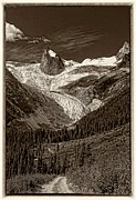 Alpine Digital Art Framed Prints - The Bugaboos monochrome Framed Print by Steve Harrington