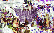 Splat Posters - The Butterfly Effect Poster by Philip Sweeck