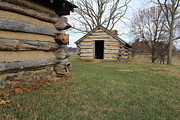 Log Cabins Art - The Cabins by David Jackson