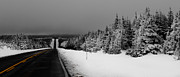 Winter Roads Photo Originals - The Cabot Trail by Michel Soucy