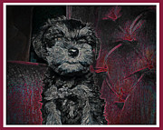Schnauzer Puppy Digital Art - The Canines Throne  by Brian Graybill