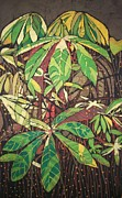 Rural Scenes Tapestries - Textiles Framed Prints - The Cassava Garden Framed Print by Lukandwa Dominic