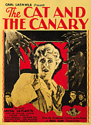 Movie Posters Framed Prints - The Cat and the Canary Framed Print by Universal