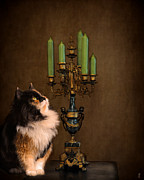 Candelabra Art - The Cat and the Candelabra by Jai Johnson