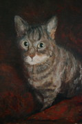Joan Glinert - The Cat