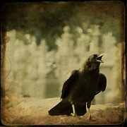 Corvidae Prints - The Caw Print by Gothicolors And Crows