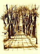 Cemetery Drawings - The cemetery road by Jana Magdova
