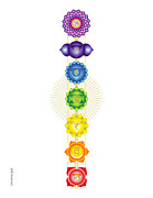 Sounds Digital Art - The Chakras by Marcy Gold