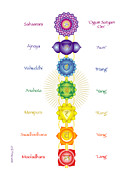 Muladhara Posters - The Chakras with Seed Mantras Poster by Marcy Gold