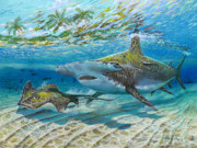 Sharks Painting Metal Prints - The Chase Metal Print by Carey Chen