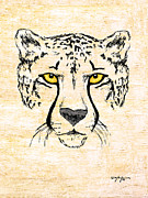 Cheetah Mixed Media Framed Prints - The Cheetah Framed Print by William Depaula