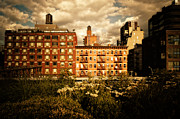 Nyc Cityscape Posters - The Chelsea Skyline - High Line Park - New York City Poster by Vivienne Gucwa