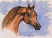 Bay Horse Drawings - The Chestnut Arabian Horse 1 by Angel  Tarantella