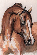Horse Drawing Painting Prints - The Chestnut arabian Horse 3 Print by Angel  Tarantella