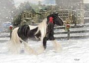 Cards Mixed Media Prints - The Christmas Pony Print by Fran J Scott