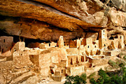 National Park Paintings - The Cliff Palace at Mesa Verde by Dominic Piperata