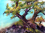 Sherry Shipley - The Climbing Tree