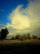 Joyce Dickens - The Cloud