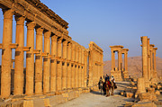 Camel Photo Framed Prints - The Colonnaded Street Palmyra Syria Framed Print by Robert Preston
