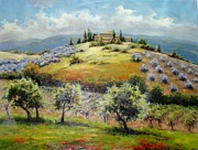 Grapevines Paintings - The Colors of Tuscany by David Kim