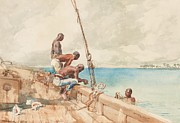 Turquoise Blue Posters - The Conch Divers Poster by Winslow Homer