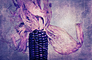 Food And Beverage Mixed Media Metal Prints - The corn on the cob II Metal Print by Angela Doelling AD DESIGN Photo and PhotoArt