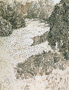 Park Drawings - The Corner of the Park by Vincent van Gogh