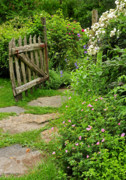 Stone Path Photos - The Cottage Garden Walkway by Thomas Schoeller