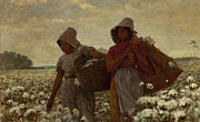 Black Women Framed Prints - The Cotton Pickers Framed Print by Winslow Homer