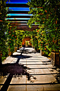 Courtyards Prints - The Courtyard Walkway at Hotel Albuquerque Print by David Patterson