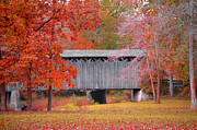 Dyana Rzentkowski - the Covered Bridge Photo
