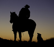 Quarter Horses Posters - The Cowboy and His Dog Poster by Carol Walker