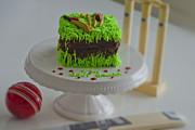 Farah Faizal - The Cricket Cake